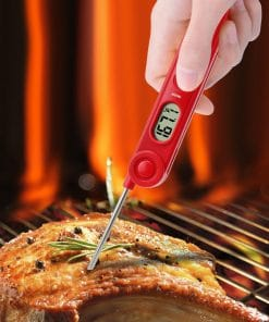 ThermoPro TP-03A Digital Thermometer Inserted in Steak