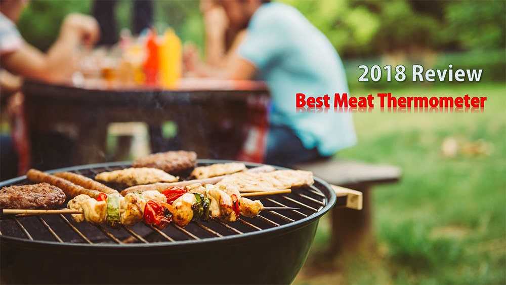 Best Meat Thermometer Review 2018