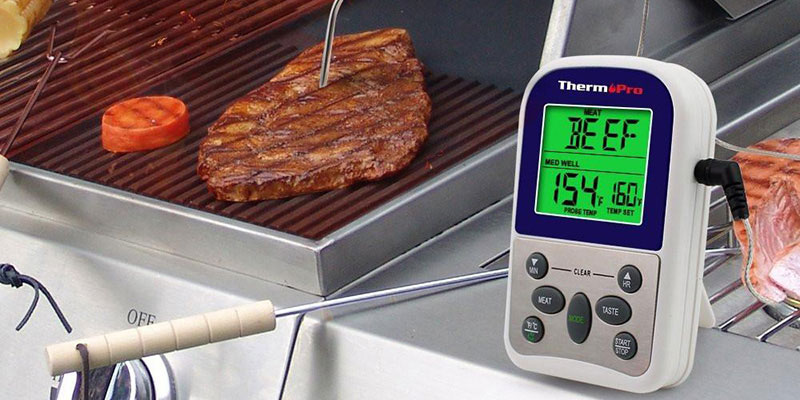 TP-10 Thermometer Probe Inserted In Steak On BBQ