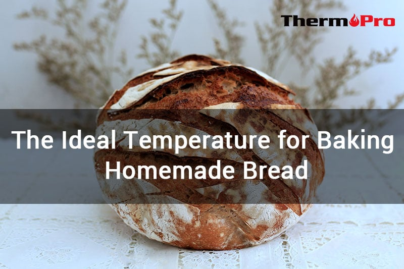 ideal temperature for homemade bread