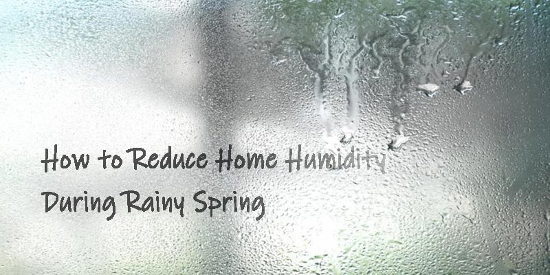 how to reduce high humidity during rainy spring