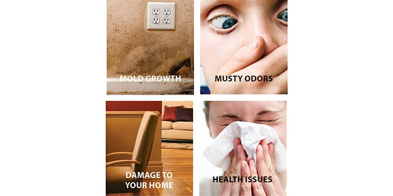 effects of high humidity