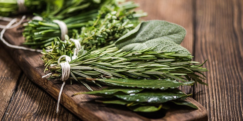 how to choose and store fresh rosemary