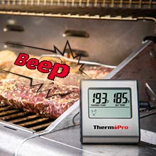 Thermometer for grilling