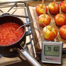 Thermometer for soup
