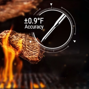 ThermoPro Thermometer Accuracy
