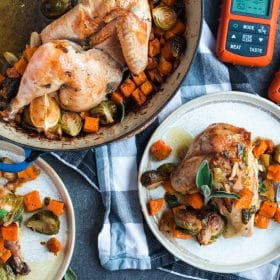 ThermoPro Recipe Autumn Chicken