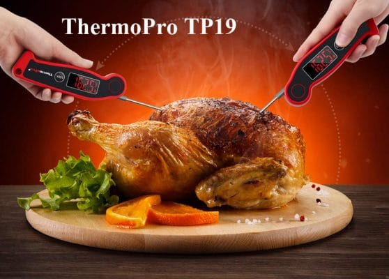 thermopro tp19