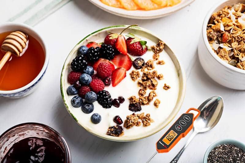 yogurt thermometer