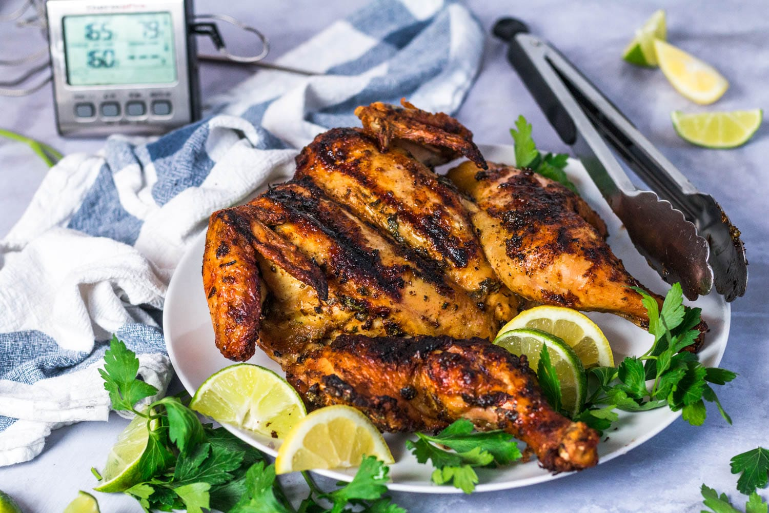 The Best Grilled Chicken Recipe Ever   ThermoPro Recipes