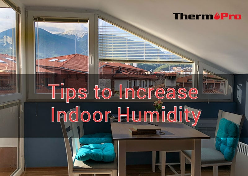 tips to increase indoor humidity