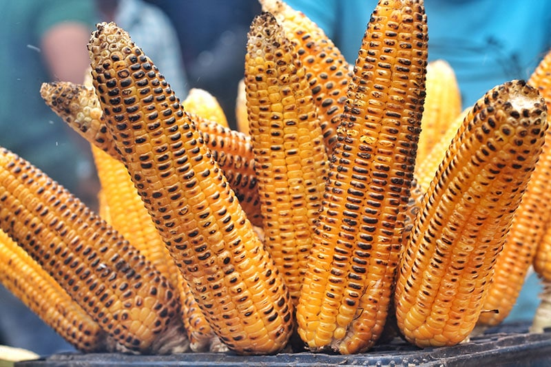 how to grill corn on stove